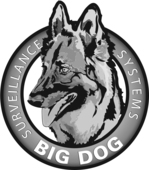 Big Dog Surveillance Systems Logo